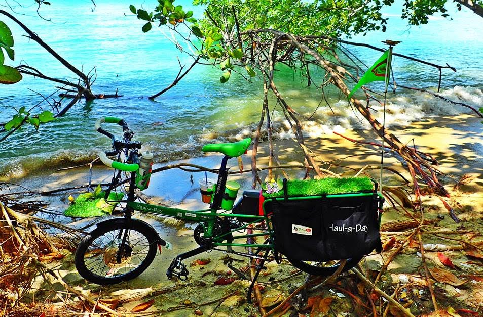 a green electric bike with a PD-DH2 Pas kit
