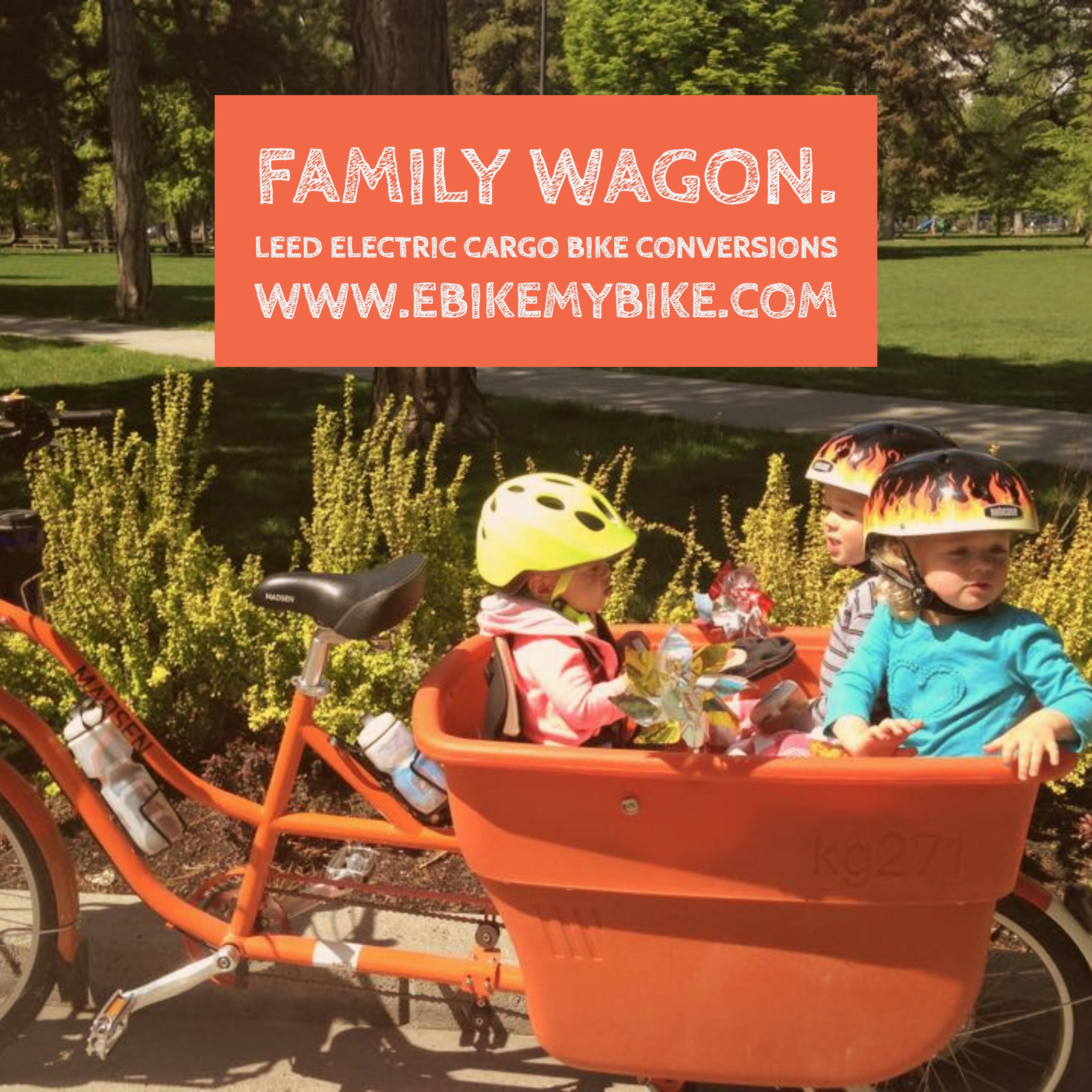 electric cargo bike for kids