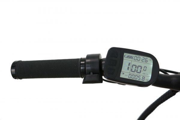 Speedometer Display of Ebike