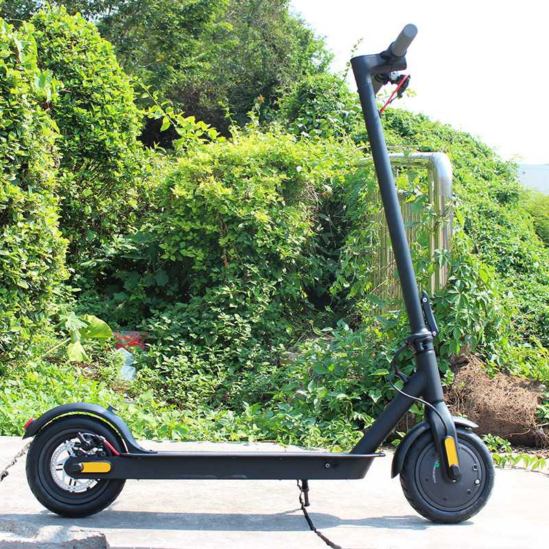 350 watt electric scooter