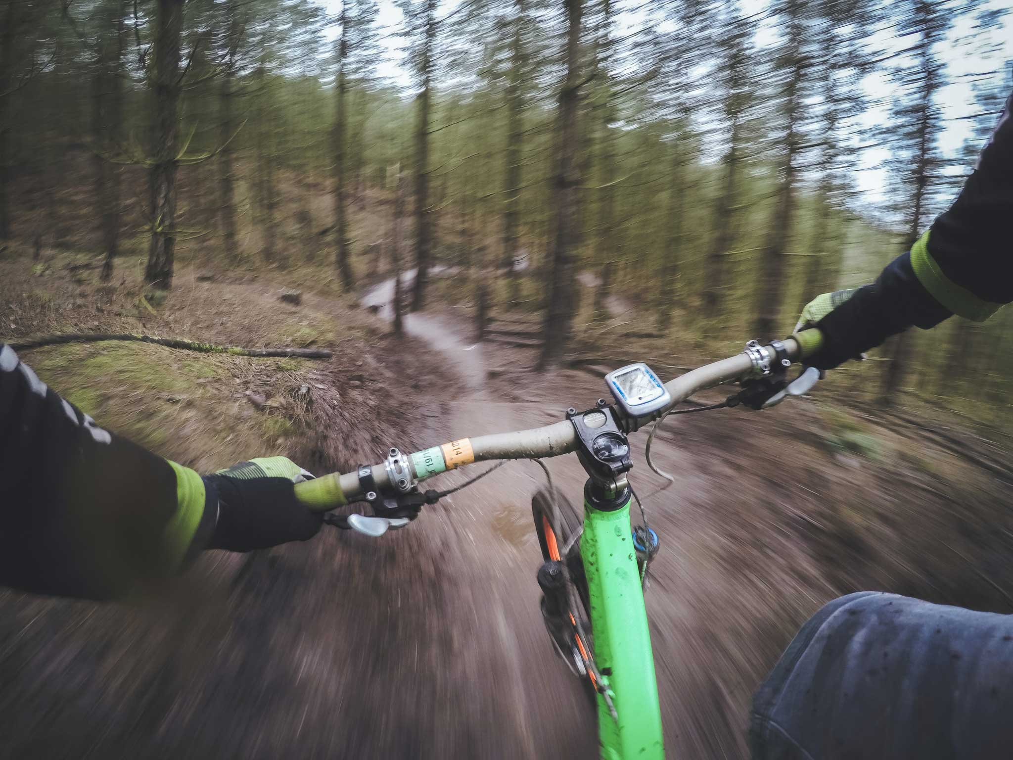 person riding a bike through the woods