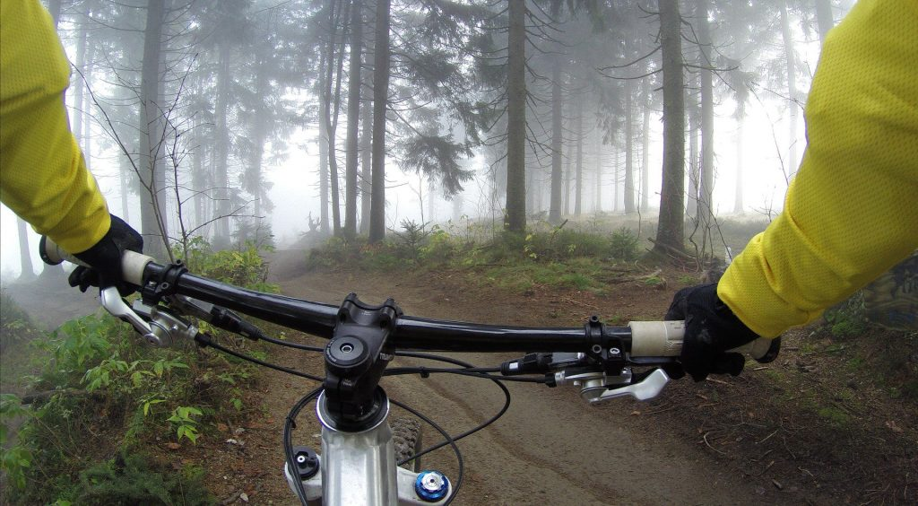 cyclist riding through a forest