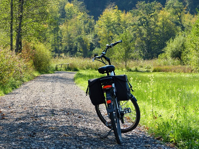 e-bike with battery bag on rocky path in the woods